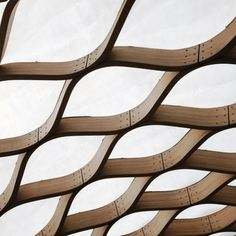 Shell Structure, Timber Structure, Parametric Design, Vsco Grid,  Honeycombs, Project 3 b32116ec10c