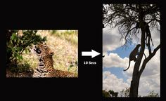 Making an Image by Jassi Oberai on 500px   For our photography safaris click here: www.lightchasers.in