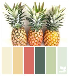 pineapple hues (design seeds) pineapple hues: love this color palette but it sure where or when I wi Design Seeds, Colour Pallette, Colour Schemes, Color Combinations, Paint Schemes, Beach Color Palettes, Palette Art, Pantone, Color Concept