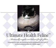 Feline Nutrition & Raw Diets for IBD Cats
