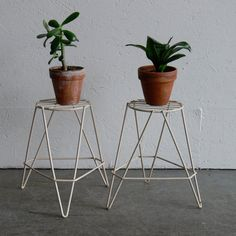 Vintage Wire Plant Stands