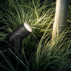 Philips Hue 1er Base Kit LED-Spot Lily Schwarz inkl.... #light #licht #leuchte #interieurdesign #interieur #lampe #dekoration #dekoideen #philips #philipshue #smarthome #smartlighting #led #outdoor #garten #gartenleuchten #spot #schwarz #außenleuchte Plant Lighting, Outdoor Lighting, Landscape Lighting Design, Led Spots, Philips Hue, Starter Set, Outdoor Landscaping, Exterior Lighting, Garden Design