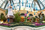 I love the Bellagio Conservatory.  It changes with the seasons, and it's always worth the stop.