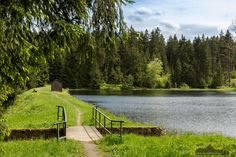 Oberer Hahnebalzer Teich #Harz #Fotokurs #Fotowandern