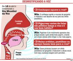 JuRehder - Infográfico sobre voz para o Jornal da Cidade-Bauru/SP