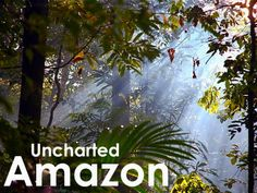 A visually stunning, feature length #documentary film exploring people and #nature in the deepest reaches of the #Amazon #rainforest. Support on #Kickstarter today!