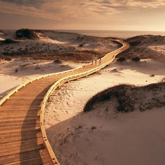 Watersound Beach, Florida Gulf Coast  - Coastal Living--this is the bike roller coaster i always want to take you to!