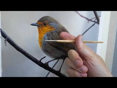 #108 How To Paint A Bird   Oil Painting Tutorial - YouTube