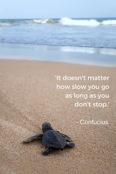 Don't Stop - Confucius Quotes - Legends Quotes Life Quotes Love, Great Quotes, Me Quotes, Motivational Quotes, Inspirational Quotes, Qoutes, Beach Quotes, Confucius Quotes, Positive Quotes
