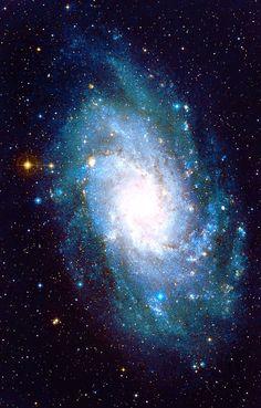 NGC 598, The Triangulum Galaxy
