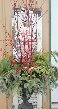 Christmas urns made with greenery and berries