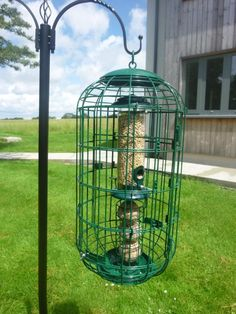 This wide diameter caged seed and fatball feeder is designed to exclude intruder beaks ( e.g starlings ) without needing protective shield ports. Because it is wider, there is more space between the feeder and the protective mesh to accommodate small birds and increase their comfort and confidence- and of course, to limit access for long-necked intruders! The Double-Mesh* system allows you to reduce the mesh gaps when you want to - e.g. in the Summer a narrow ...