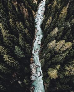 beautiful overhead photo of river & forest