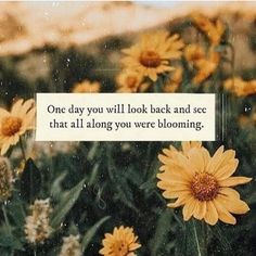 Flower quotes - The Awaken Collective Pretty Quotes, Cute Quotes, Short Quotes Love, Happy Quotes, Image Tumblr, Sunflower Quotes, Sunflower Images, Sunflower Wallpaper, Quote Aesthetic