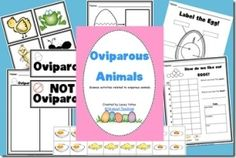 Oviparous Animals Pack-Science and a fun cooking activity! by dominique