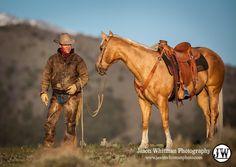 cowboy and pally Cowboy und Pally Cowboy Horse, Cowboy Up, Cowboy And Cowgirl, Western Riding, Western Art, Western Theme, Palomino, Malboro, Texas Cowboys