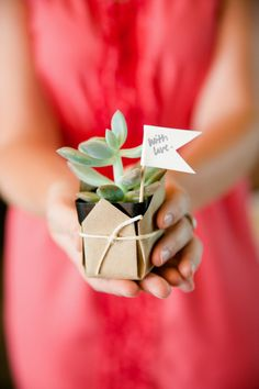 Succulent favors: pick a flower from a country we've visited Wedding Reception Flowers, Wedding Favours, Wedding Gifts, Giveaways, Just In Case, Just For You, Succulent Favors, Dream Wedding, Wedding Day