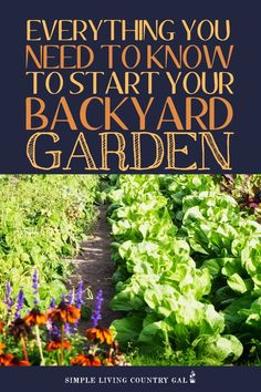 There is not better time to learn how to start a backyard garden and this might just be the best resource for you. Step by step tips to grow big this season List Of Vegetables, Planting Vegetables, Growing Vegetables, Vegetable Gardening, Growing Plants Indoors, Growing Herbs, Gardening For Beginners, Gardening Tips, Flower Gardening