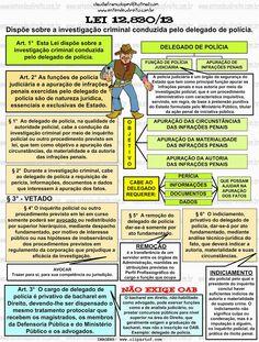 DELEGADO DE POLÍCIA - LEI 12.830