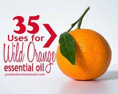 Wild Orange oil cont