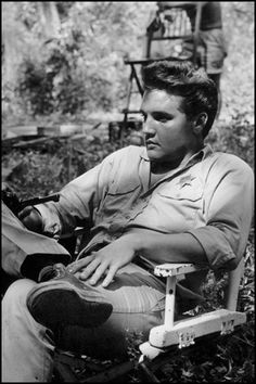 Elvis hanging in some Converse!
