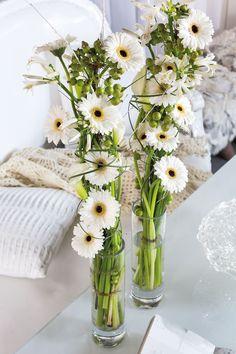 Wonderful white gerbera bouquets in different size vases #whitegerberas #inspiration #colouredbygerbera #dutchgerbera