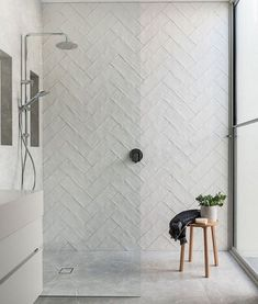 Serious kitchen and bathroom inspo in this historic Australian home renovation - bathroom - Bathroom Decor Bathroom Inspo, Bathroom Inspiration, Modern Bathroom, Small Bathroom, Bathroom Ideas, Textured Tiles Bathroom, Bathroom Showers, Attic Bathroom, Gold Bathroom