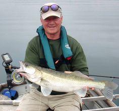 Zander fishing in re