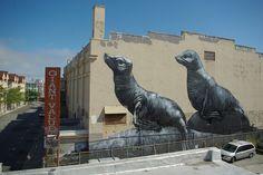 Sea Lions.  San Francisco, CA.  By ROA