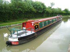 Whooper Swan - Gayton Marina. A 70ft 2003 Alvechurch Boat Centres 12 berth cruiser stern narrowboat. Available from October 27th 2017. For more information visit www.abcboatsales.com or call gayton Marina on 01604 858685. Canal Boat, Narrowboat, Houseboats, Boats For Sale, Swan, October, England, Exterior, Swans