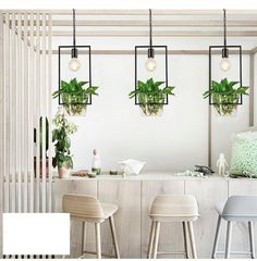 Hanging Plant Frame Pendant Light : Tudo And Co U2013 Tudo And Co