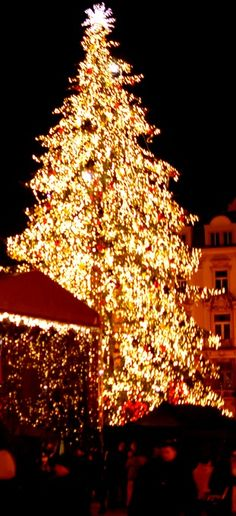 Best Christmas Markets in Prague!