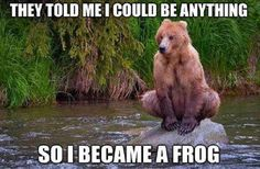 Bearly a frog