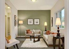 Açık renk duvarlarınızdan sadece birini farklı ve sıcak bir renge boyamanız bütün salonu farklı gösterecektir.