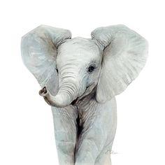 WATERCOLOR elephant, Baby elephant Nursery wall art, PRINTABLE, Nursery decor, Cute elephant paintin