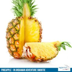 Pineapple 29592 - Fruits and vegetables - Harvest season Dried Pineapple, Pineapple Under The Sea, Pineapple Fruit, Pineapple Express, Eating Pineapple, Pineapple Benefits, Dry Snacks, Tropical Fruits, Tropical Party