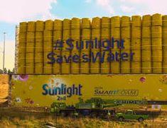 sunlight jojo tanks - Google Search Sunlight, Tanks, Google Search, Sun Light, Shelled, Thoughts