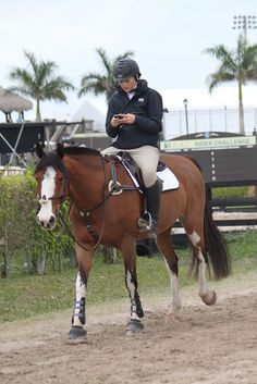 Texting and riding..... I do this too much. I am in LOVE with this horses markings, they are so unique