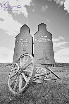 Rowley Alberta, Ghost Town, Grain Elevators, summer, Wall Art