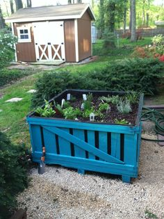 Shipping crate herb garden