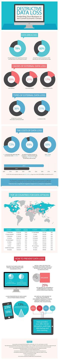 Infographic on Destructive Data Loss. Clean and simple layout. It Management, Data Quality, Computer Security, Web Security, Cyber Threat, Data Backup, Business Intelligence, Data Analytics, Data Science