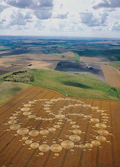 Poster Print of Milk Hill, Alton Barnes, Aug 2001 crop circle Crop Circles, Ufo, Nazca Lines, Labyrinth, Unexplained Phenomena, Ancient Aliens, Ancient History, European History, American History
