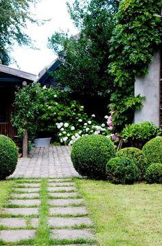 Jeg kan godt være stresset av for mange blomster Garden Steps, Garden Yard Ideas, Easy Garden, Garden Spaces, Garden Landscaping, Back Gardens, Small Gardens, Outdoor Gardens, Scandinavian Garden