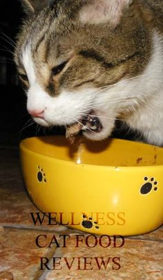 17 Best Cat Food Reviews Images On Pinterest Food Network Trisha
