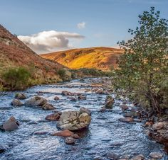 Visitor guide to Ingram and the Breamish Valley in the Cheviot Hills of Northumberland National Park including. Northumberland National Park, Britain, National Parks, Hiking, England, River, Beautiful Scenery, Landscape, Places