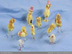 Bird, Animals, Yellow, Animales, Animaux, Animais, Birds, Animal