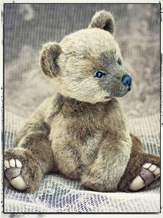 I am thrilled to introduce my newest bear BRUNO . He is a design I have been planning for a long time, he's a fusion of realistic style w. by colleen Vintage Teddy Bears, My Teddy Bear, Cute Teddy Bears, Plush Animals, Felt Animals, Teddy Beer, Teddy Toys, Charlie Bears, Boyds Bears