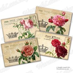 Printable Postcards Shabby Roses Pierre Joseph by WaratahLane
