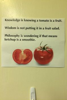 Knowledge is knowing a tomato is a fruit. Wisdom is not putting it in a fruit salad. Philosophy is wondering if that means ketchup is a smoothie. Funniest Pictures Ever, Funny Pictures, My English Teacher, English Teachers, Meaning Of Life, Daily Funny, Funny Life, Knowledge Is Power, Book Club Books