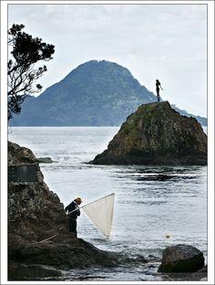 Whakatane Whitebaiter - Whakatane, Bay of Plenty - New Zealand